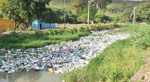 Sociedad Ecológica del Cibao dice contaminación se enfrenta educando