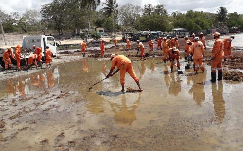 Brigada de Obras Públicas retira sargazos de playa Boca Chica