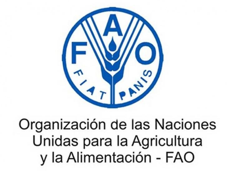FAO destaca reducción pobreza en RD; apoyará esfuerzos Gobierno en región Sur