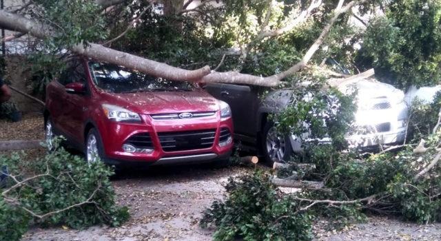 Fuertes vientos azotaron varias comunidades de Santiago