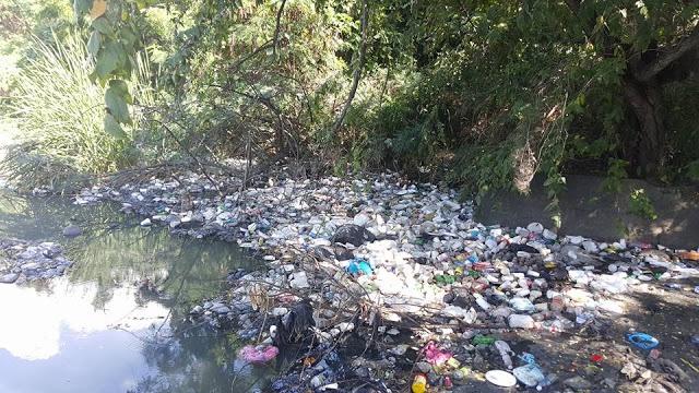 Afluentes del río Yaque arropado de plásticos y basura