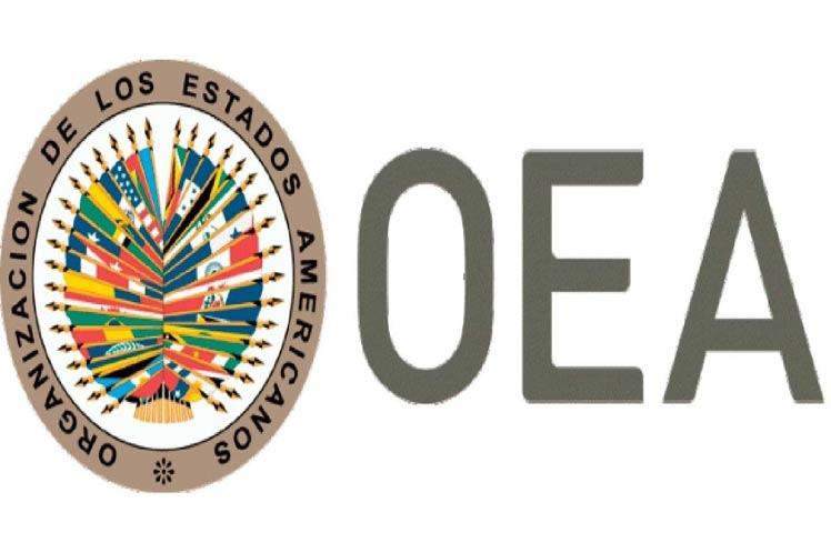 Tardío informe de la OEA sobre elecciones de Bolivia genera rechazo