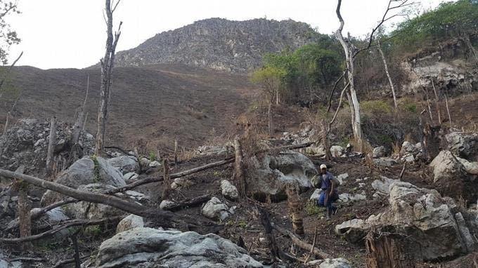 Denuncian queman montañas ante indiferencia de Medio Ambiente