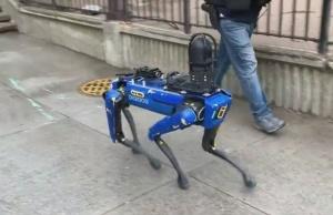 https://lanaciondominicana.com/imgs_contenido/noticias/2021/04/thumb_aumenta-presencia-de-perros-robots-policias-en-calles-nyc.jpg